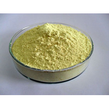 Baical Skullcap Extracto / Baical Skullcap Extracto de raíz / Baicalin 40% -98%