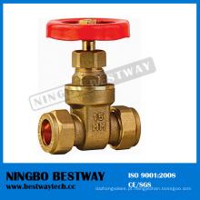 Válvula de porta forjada com preços de corpo de bronze (BW-G11)