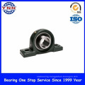 Black Coated Pillow Block Bearings Industry Use (UCP 311)