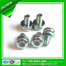 M4 Zinc Plated Pan Head Torx Sem Screw
