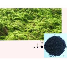 NPK Microbial Seaweed extract base de estrume orgânico com aminoácido