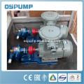 Getriebeölpumpe der Edelstahlzahnradpumpe Ölförderpumpe der Ölpumpe