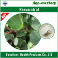 Resveratrol 98% (Giant Knotweed Extract)