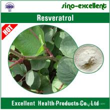 Resveratrol 98% (extracto gigante de Knotweed)