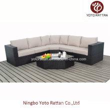 Heiß! New Style Rattan Sofa Set (1103)