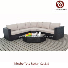 Hot! New Style Rattan Sofa Set (1103)