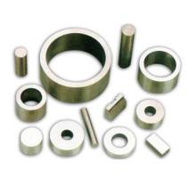 Industrial Rare Earth Neodym Permanent Magnet für Lautsprecher