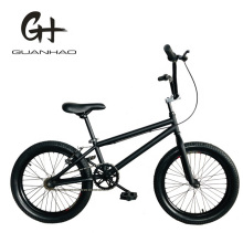 20 Inch Ce Cheaper Hi-Ten Steel Street Kid BMX Bike
