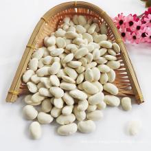 Large white kidney beans fagioli