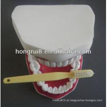 Modelo de Cuidados Dentários Médicos de Estilo Novo, cuidados dentários