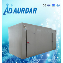 Cold Room for Chicken and Meat in Container Designed