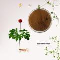 Экстракт корня ашваганды / порошок витанолидов ашваганды