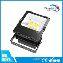 CE, lumière d'inondation extérieure de l'adaptation 100W LED de RoHS
