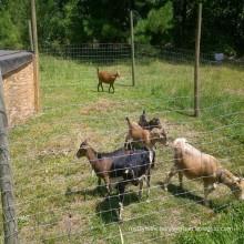 Galvanized farm field fence