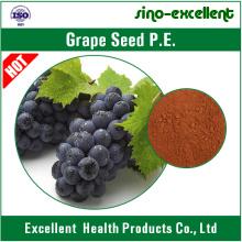Extrait de graines de raisin en poudre 95% OPC
