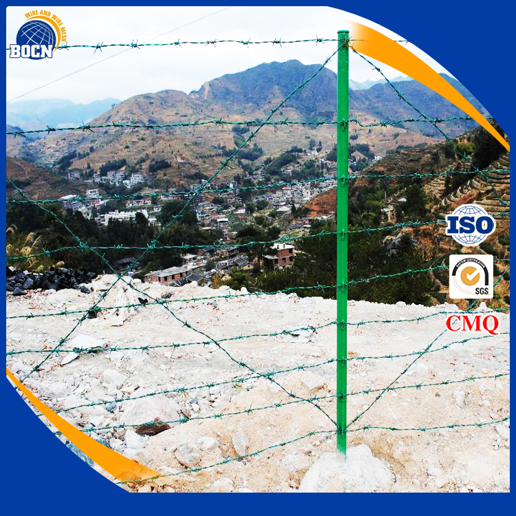 security weight of per meter galvanized barbed wire