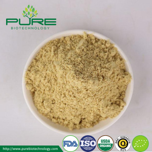 Organic Dried Ginger Extract Powder