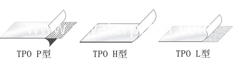 TPO types