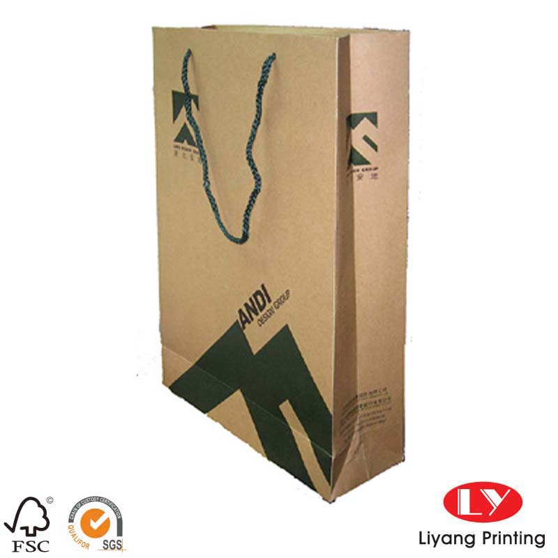 Paper bag packaging 032704