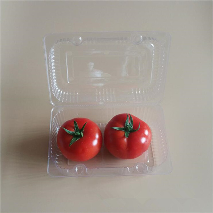 Clear Plastic Tomatoes Container