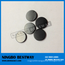 Black Coating Neodymium Disc Magnet