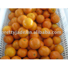 Frische Valencia Orange