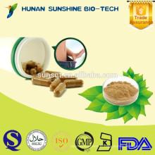 Capsules vertes d'extrait de grain de café d'extrait de fines herbes pour perdre le poids et antifungal normal