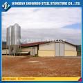 Structure d'acier à faible coût Brotle Volaille de volaille Design Volaille Maison de poule agricole