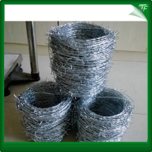 Green galvanized barbed iron wire