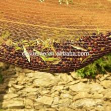 Hochwertiges spätestes 95g einige Olivenernte-Netz