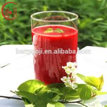 Concentrado de jugo de Goji / Brix 36%