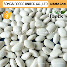 Chinese dried white beans,new crop