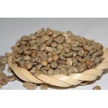 Granos de café verdes de Yunnan de la buena calidad al por mayor