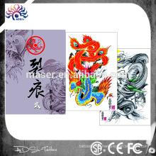 Feito na China hot tattoo esboço livro