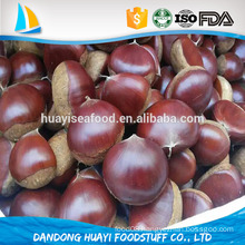 organic chinese fresh chestnuts on sale with cheap price