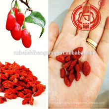 Type conventionnel ou BCS Type organique ou type de pesticide faible Ningxia fruit miracle-baies de Goji Ningxia Medlar & Ningxia GOU QI