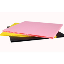 Professional for PP Hollow Sheet 2mm 3mm 4mm 5mm polypropylene plastic pp corflute export to Russian Federation Supplier