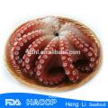 Frozen Octopus, Octopus Vulgaris,Octopus Ocellatus