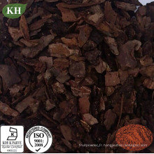 Extrait d'écorce de pin largement utilisé Proanthocyanidines 95%