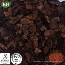 Amplamente utilizado Extracto de casca de pinho Proanthocyanidins 95%