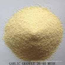 Dehydrated Garlic Granule From Jinxiang Factory