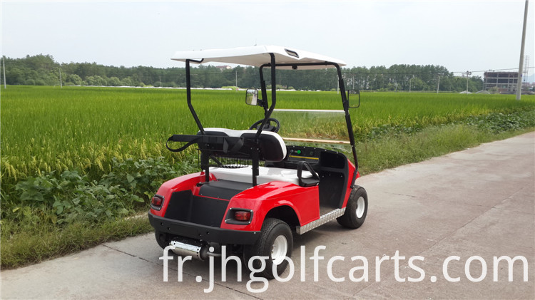 2 seater gas powered golf carts