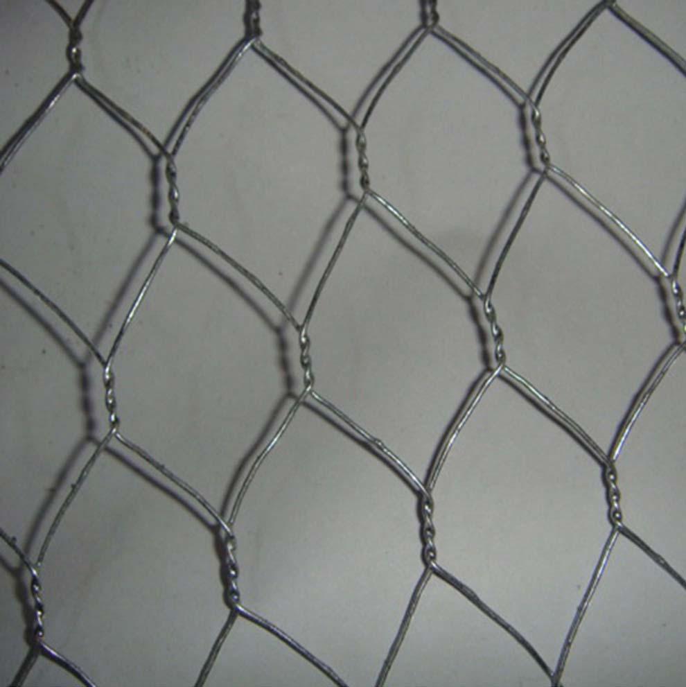 Hochfeste Edelstahl Chicken Wire China Hersteller