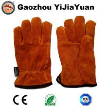 Thinsulate Full Futter Leder Sicherheit Winter Fahrhandschuhe