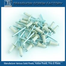4.8X20mm Aluminium Steel Powder Coated Blind Rivet
