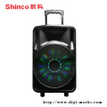 12 Inch Moveable Home Theatre LED Light Speaker