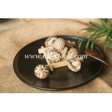 Top vente 2.5-3cm mince thé fleur champignon sec légumes