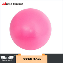 Anti Burst 65cm Gym Exercise Ball Swiss Yoga Fitness