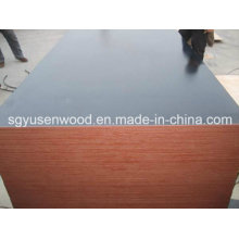 Film Faced Shuttering Plywood (1220*2440mm/1250*2500mm)