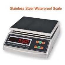 Stainless Steel Price Scale Counting Scale